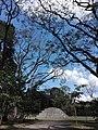 Ruinas MAYA Copan Honduras 17.jpg