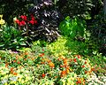 Rutgers Gardens in New Brunswick New Jersey flowers and bushes Image Number 28.jpg