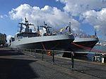 SAN frigates SAS Isandlwana (F-146) and SAS Amatola (F-145) (8102950713).jpg