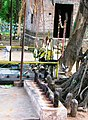 SRI AALANKOTTAI MUNIYAPPAN TEMPLE, Opp to Govt. I.T.I., SALEM - panoramio (5).jpg