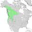 Salix scouleriana range map 1.png