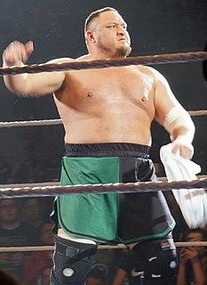 Samoa Joe American professional wrestler