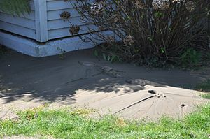 English: Sand blow in Christchurch, New Zealan...