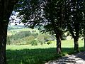 Sankt Märgen, Weg zur Ohmenkapelle 7.jpg