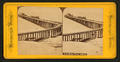 Santa Monica Wharf, California, from Robert N. Dennis collection of stereoscopic views.png