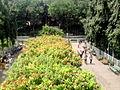 Sarasbaug garden.jpg