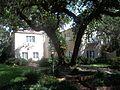 Sarasota FL Whitfield Estates-Broughton St HD 7219-03.jpg