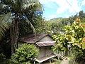 Sarawak Village2.JPG