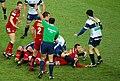 Scarlets vs Treviso - panoramio (3).jpg