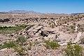 Scenery at Bluffs Trail - Las Vegas Bay Campground (316af190-4074-40b0-b96d-6b931e676be3).jpg