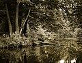 Schlosspark, Charlottenburg, Bild 2.jpg