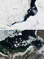 Sea Ice Retreat in the Beaufort Sea - Flickr - NASA Goddard Photo and Video.jpg