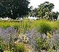 Sensory Garden - geograph.org.uk - 332731.jpg