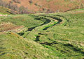 Shire Path on Worcestershire Beacon.jpg