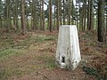Shirlett Common trig point - geograph.org.uk - 761450.jpg