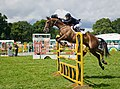 Show Jumping in the West Ring, New Forest Show 2009 - geograph.org.uk - 1431504.jpg