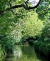 Shropshire Union Canal approaching Tyrley Locks, Staffordshire - geograph.org.uk - 1606767.jpg
