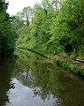 Shropshire Union Canal at Woodseaves Cutting, Shropshire - geograph.org.uk - 1333457.jpg