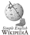 Simple Wikipedia admin mop.png