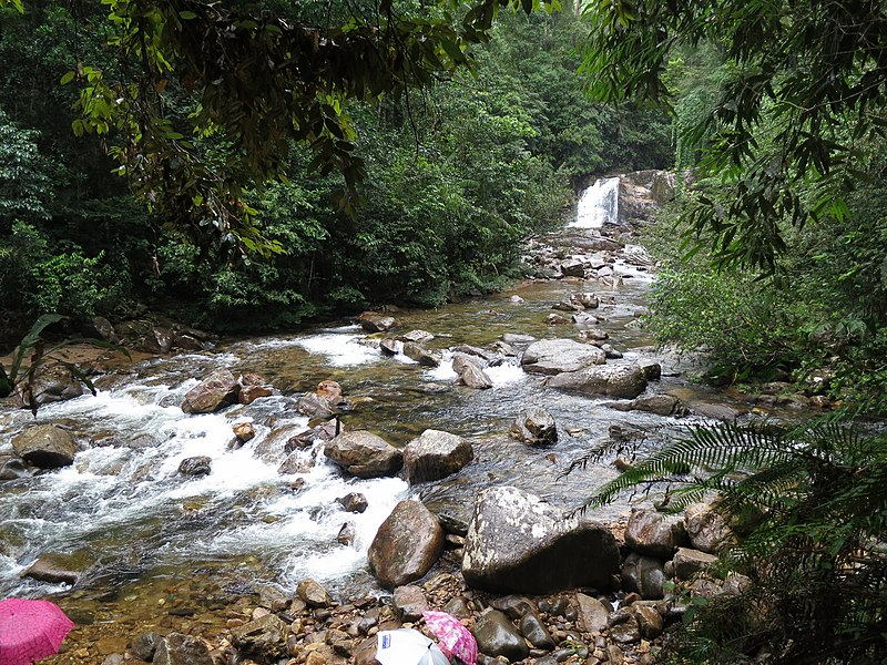 800px-sinharaja_forest_waterfall7