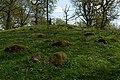 Skånings-Åsaka 35-1 - KMB - 16001000113024.jpg