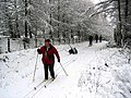 Skiing on the old military road - geograph.org.uk - 151171.jpg