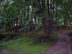 Skomantu piliakalnis.2007-08-19.jpg