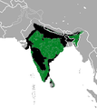 Sloth Bear area.png