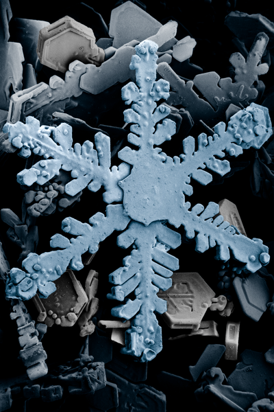 File:Snow crystals 2b.png