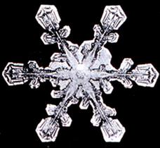 Snowflake6.png