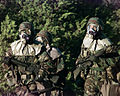 Soldiers at MOPP level 4.jpg