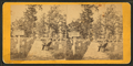 Soldiers cemetery, Arlington, Va, from Robert N. Dennis collection of stereoscopic views.png