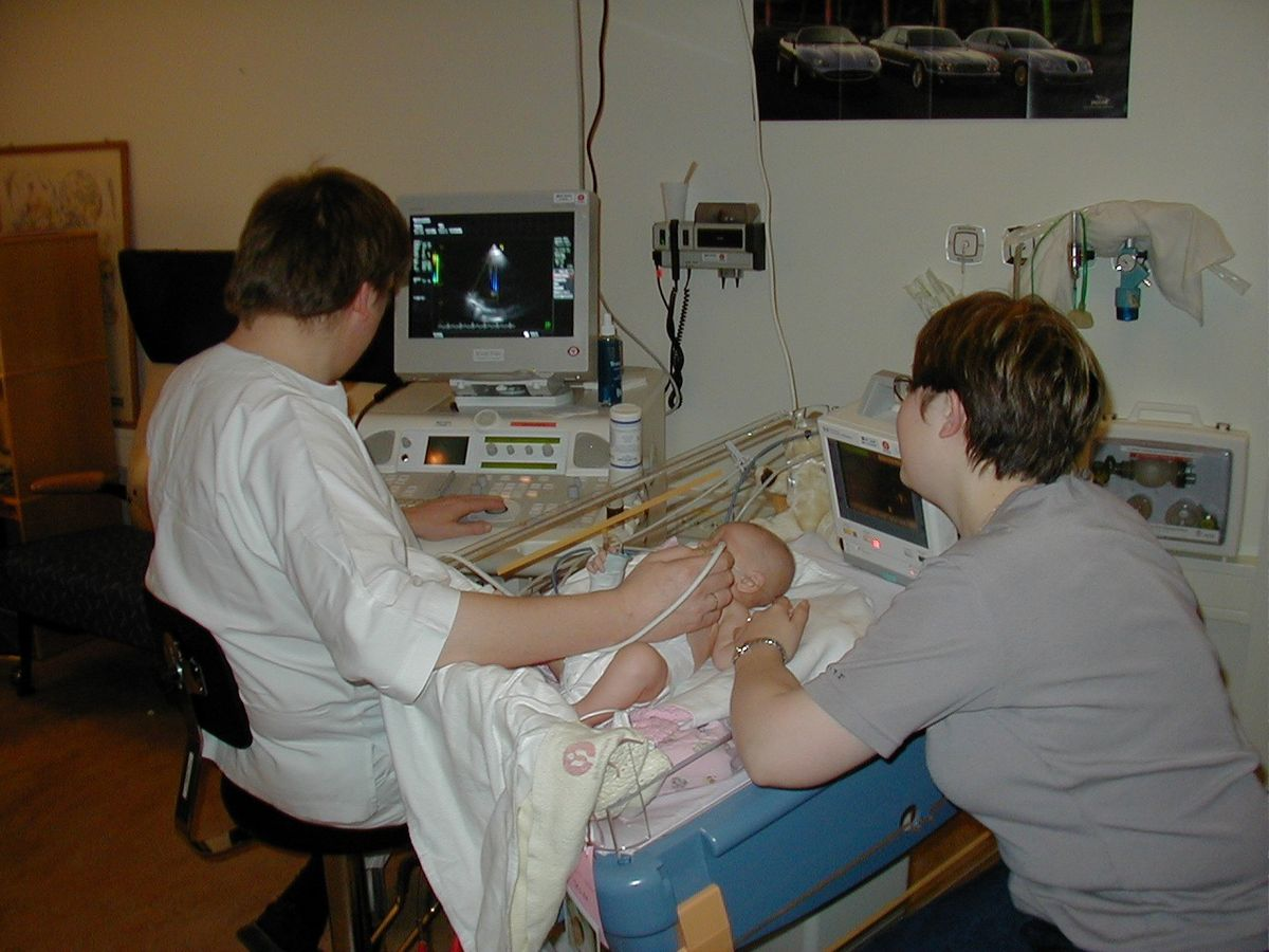 Medical ultrasound - Wikipedia