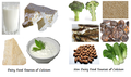 Sources of Calcium.png