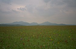 South Uist machair (timniblett).jpg