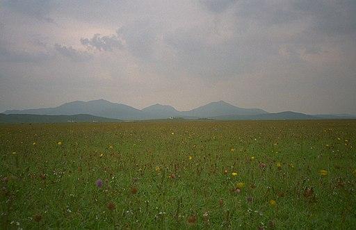 South Uist machair (timniblett)