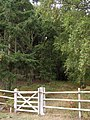 Southern entrance to Hasley Inclosure, New Forest - geograph.org.uk - 236206.jpg