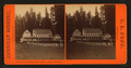 Sperry & Perry's Hotel, Big Tree Grove, California, by Pond, C. L. (Charles L.).png