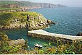 Stackpole Quay and Cliffs. - geograph.org.uk - 113105.jpg