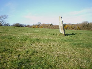 Cattle rubbing stone - A Standing Stone or Menhir used a Cattle Rubbing Stone