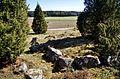 Stensättning på gravfält Rasbo 428-1 Uppland Sweden.jpg