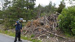 Stiko   Per og Fantans bunke, et offerkast med tørre pinde.