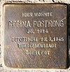 Stolperstein Pionierstr 69 (FalFe) Regina Postrong.jpg