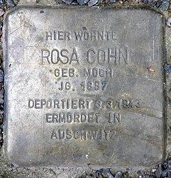 Photo of Rosa Cohn brass plaque