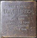 Stumbling stone for Lina Goldfisch (Sternengasse 27)