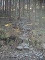 Strome wejście na Radunię - panoramio.jpg