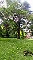 Sucrerie d'Eppeville, le parc du château 4.jpg