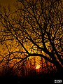Sun sunset sekil resim ordubad best best sozlu quotes nece azerbaijan natura natural photo photos gunbatimi gunes profil resimleri yukle doWnload endir indir.JPG