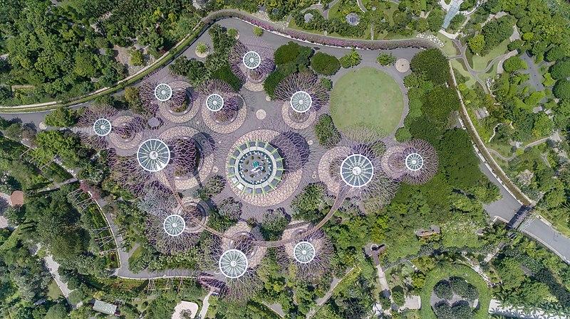 Supertree Grove Singapore (36623029551) (2).jpg