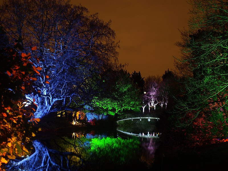 File:Syon Park Enchanted Woodland 3.jpg